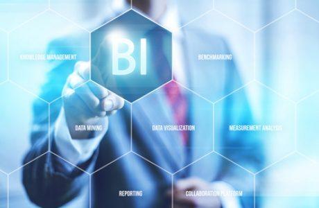 בינה עסקית לעסקים (BI) ודוחות